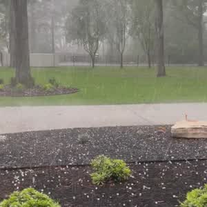 1/2 in hail on north side of Tomball.